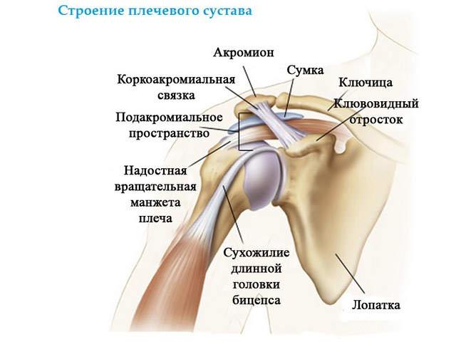 Разрыв связок плечевого сустава лечение лечение тазобедренних суставов