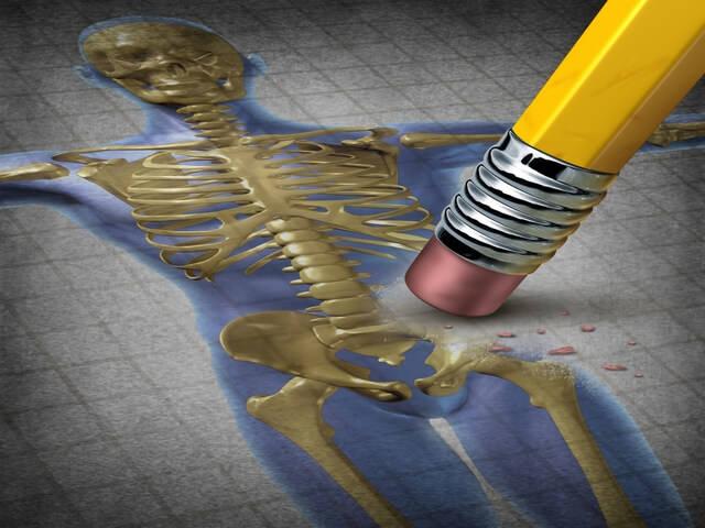 Рисунок человеческого скелета