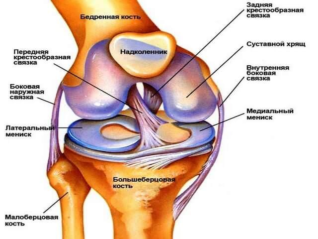 минусы эндопротезирования коленного сустава
