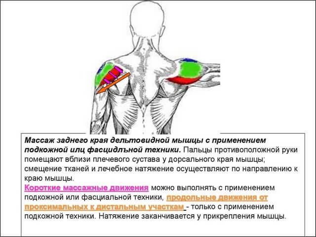 Изображение - Массаж плечевого сустава Massazh-plech5