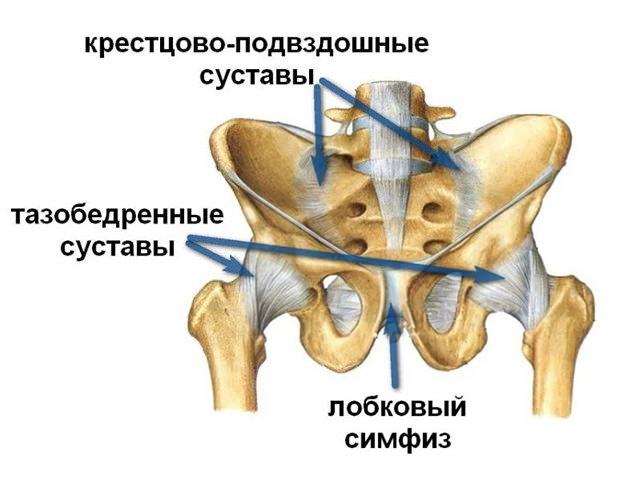 Изображение - Хрустит нога в тазобедренном суставе hrust-v-tazobedrennom-sustave-1