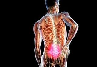 Что такое копчик строение мышцы связки и гендерные различия
